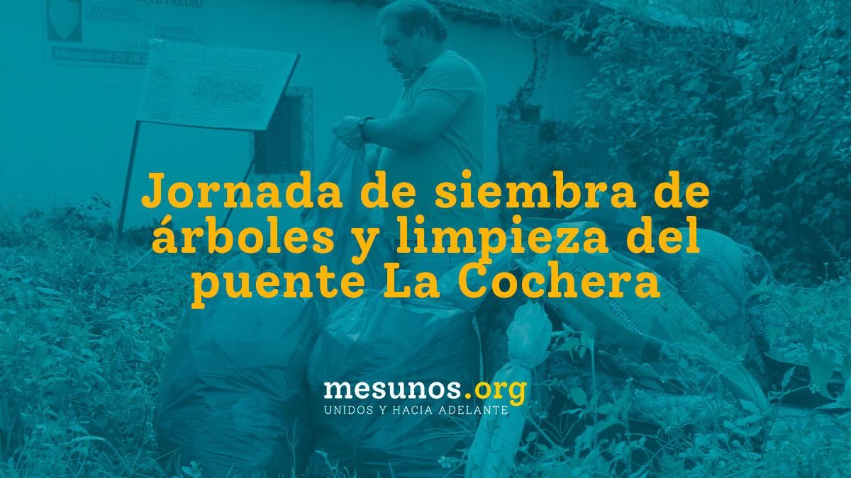 Jornada de siembra de árboles y limpieza del puente La Cochera